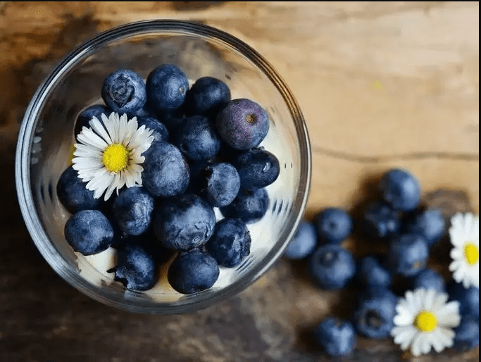 Photo of Blueberry, An Ally For Health: Properties And Benefits