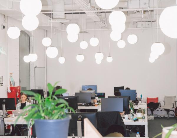 Eco-Friendly Office Decor