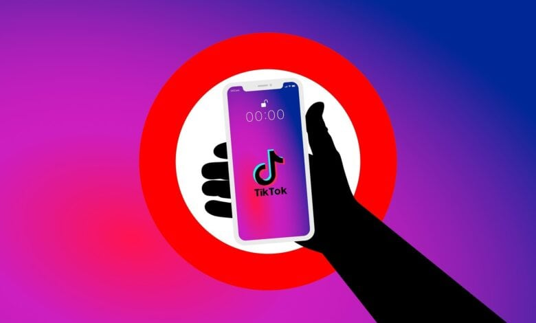 TikTok banned in Pakistan for'immoral, indecent' content